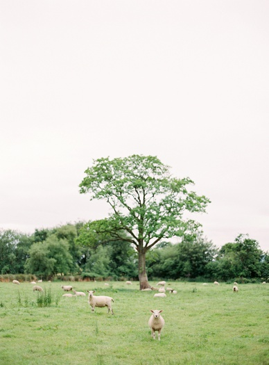 My Irish heart destination wedding in Ireland by peaches&mint