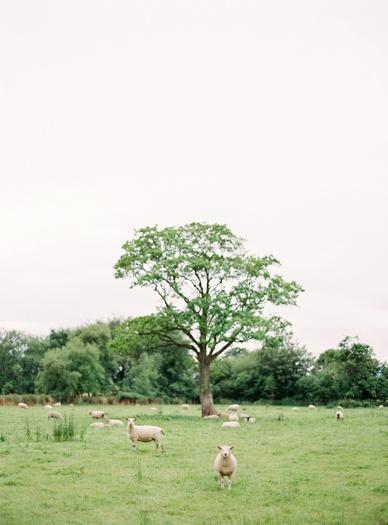 My Irish heart destination wedding in Ireland by peaches&mint