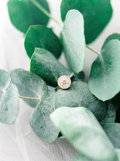 Engagement Ring wedding Photography by peachesandmint.com