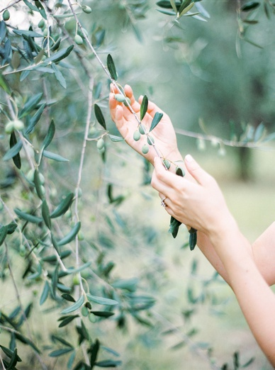Olive Grove Wedding Inspiration Tuscany, Comme Soie Styling, Peaches & Mint Finest Film Photography, Gibson Bespoke Couture Necklace & Cape, Twobirds Dress equals magic
