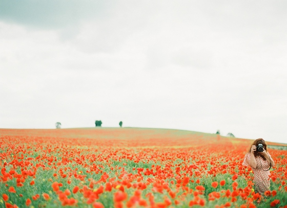 Film photography, poppy field, England